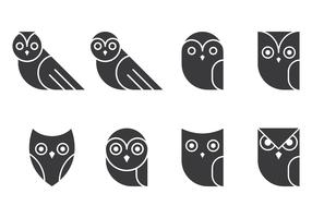 Owl Glyphs Collections