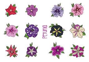 Various Petunia Flower Vectors