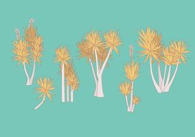 Yucca Plant Vectors