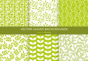 Green Leaves Background Vector Pack