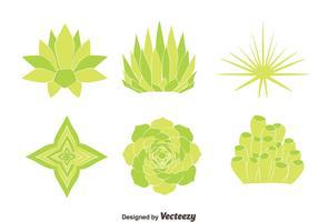 Green House Plant Vectors