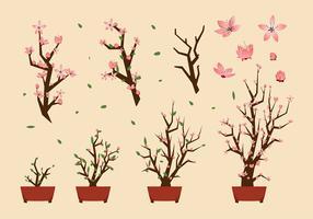 Peach Blossom Free Vector