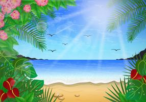 Floral Scene Of Playa