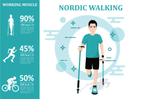 Nordic Walking Infographic