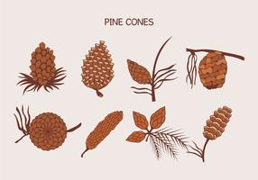 Brown Pine Cones Vector Illustration