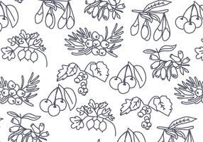 Tree Seeds and Berries Pattern Vector