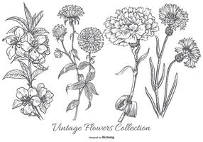 Vintage Flower Collection