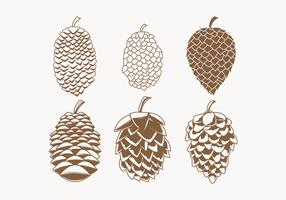 Pine Cones Vector Collection