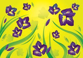 Iris Flower Pattern Background