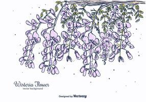 Hand Drawn Wisteria Flower Vector Background