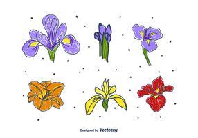 Hand Drawn Iris Flower Set