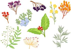 Free Decorative Herbs Vectors