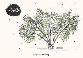 Hand Drawn Palmetto Vector Background