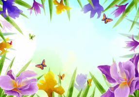 Frame of Iris Flowers Vector