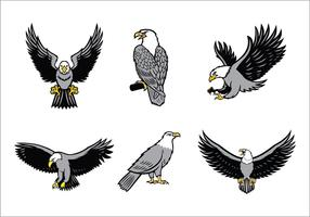 Eagles Mascot Vector Set