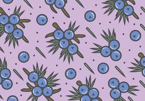 Juniper Pattern Background