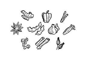 Free Herbal Spice Icon Vector