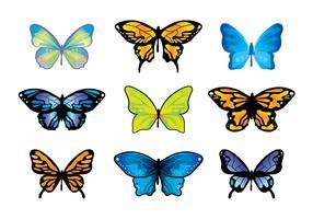 Mariposa Butterfly Vector Set