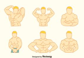 Hand Drawn Body Building Vectors