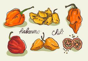 Hot Habanero Doodle Sketch Vector Illustration