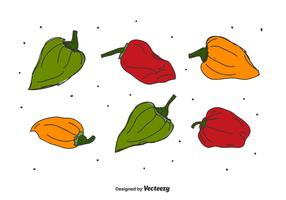 Hand Drawn Habanero Vector