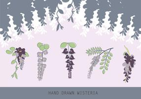 Hand Drawn Wisteria Flat Vector