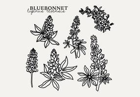 Botanical Bluebonnet