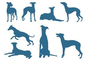 Silhouettes of Greyhound Dogs