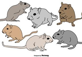 Vector Gerbil Rodent Illustrations Set