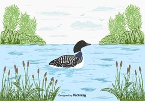 Loon Vector Background