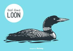 Hand Drawn Loon Vector Illustration
