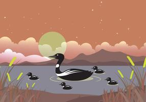 Loon Family On Lake Illustration