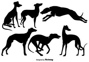 Vector Whippet Dogs Silhouettes