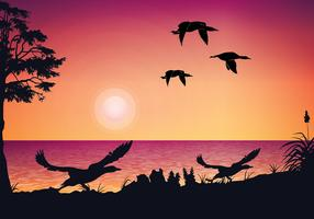 Loon Sunset Free Vector