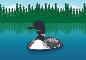 Swimming Loon Illustration