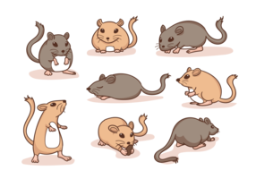 Gerbil Cartoon Vector