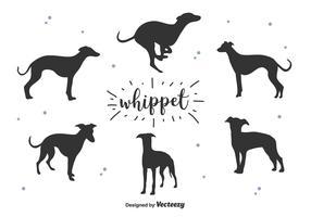 Whippet Silhouette Vector