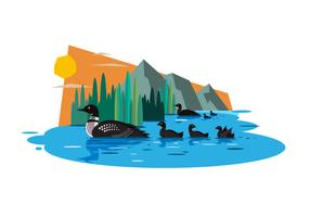 Loons Vector Illustration