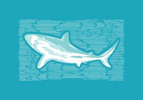 Shark Lithograph Vector Illustration
