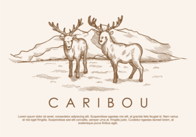 Free Hand Drawn Deer Caribou Vectors