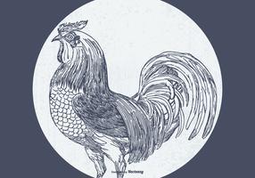 Vintage Sketched Rooster Illustration