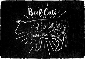 Beef Cuts Diagram Vector