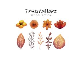 Watercolor Illustration Leaves And Flowers Collection