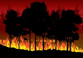 Forest Fires Illustration