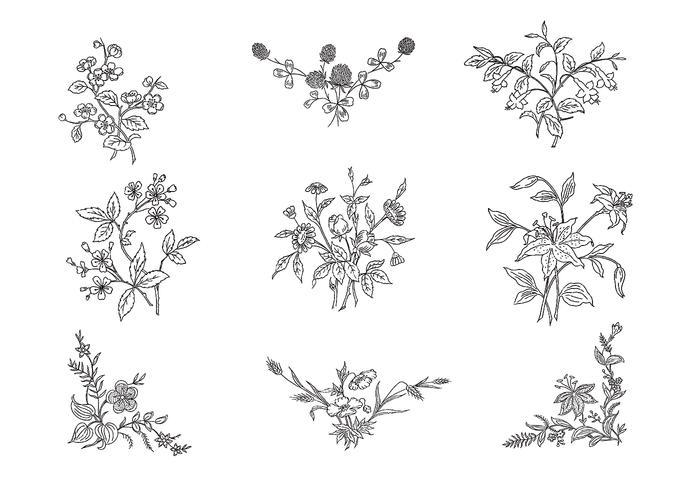 Pacote de vetor de flores pretas e brancas desenhadas à mão