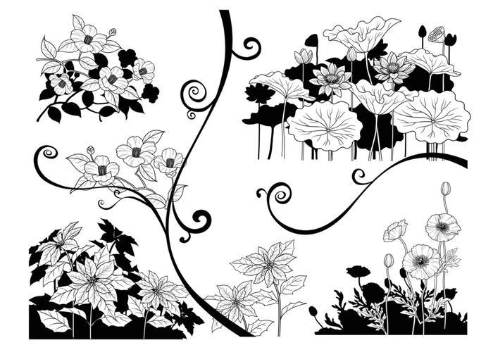 Pacote vetorial de flor de contraste preto e branco