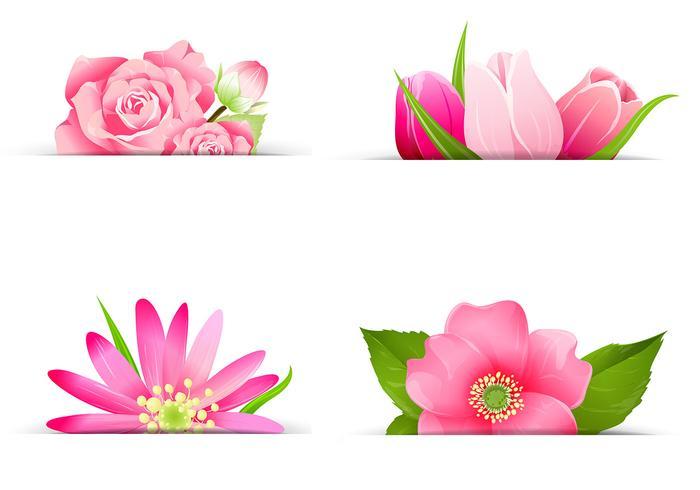 pink-flower-banner-v