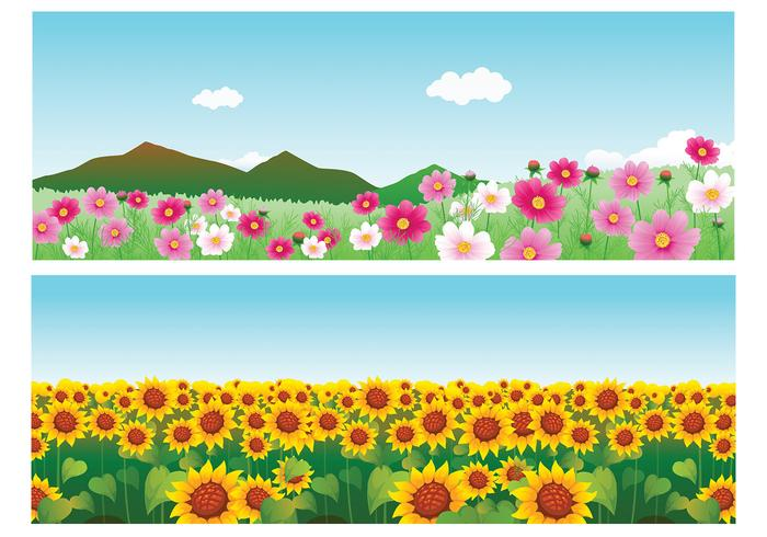 Summer Flower Vector Wallpaper Pack