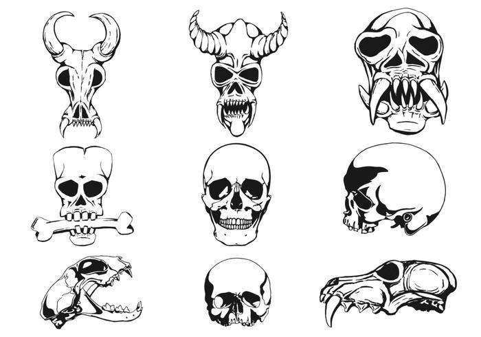 Nine Skulls Vectors