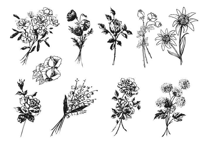 Engraved Flower Vector Pack